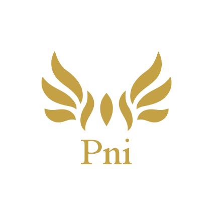 Pni Club für Unternehmer mit Handschlagqualität